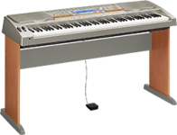 Casio WK-8000 Keyboard