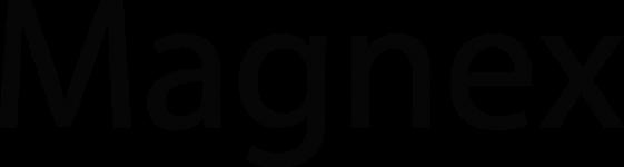 Magnex Digital Camera Memory